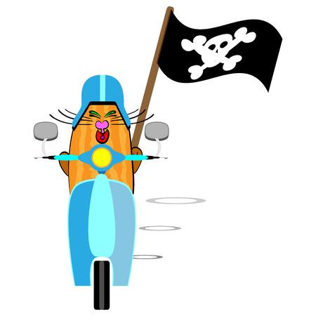 habbit: flat designed vector illustration of a cat on the tiny motorbike