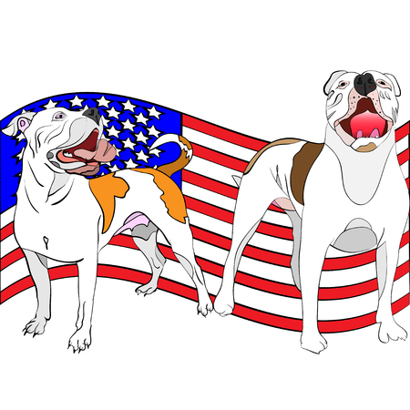 hand-drawn, outlined, vector illustration of a couple of american bulldogs in front of a waving american flag Illustration