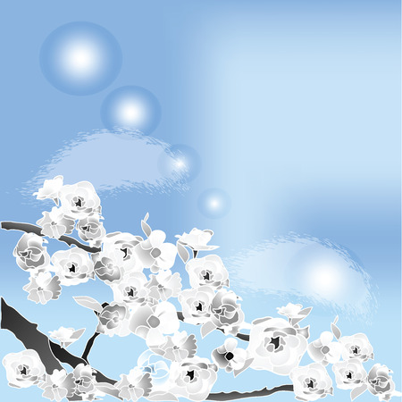 vector illustration of outlined, monochrome cherry, sakura branches and flowers on a blue sky