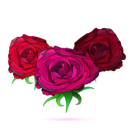 vector illustration of three different, outlined rose flowers Illustration