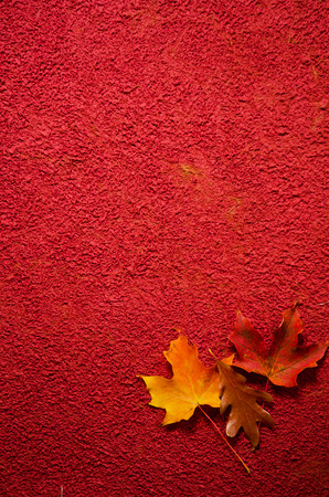 Red Leaf Textured Handmade Background Paper Stock Photo