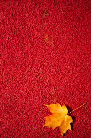 Grunge Red Textured Background Paper with Yellow Fall Leaf