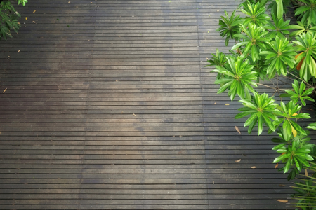 High angle view of dark wooden floor with lush foliage trees in summer. Sri Nakhon Khuean Khan Public Park, Bang Krachao, Thailand. Nature and wooden background.