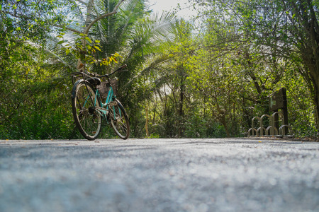 Low angle view of a bike parking on an empty road surrounded by lush green foliage in tropical forest in summer. Imagens