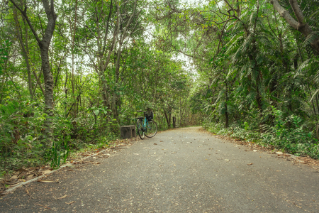 A paved road for biking surrounded by shady lush green foliage tropical forest in summer. Bang Kachao, Thailand.