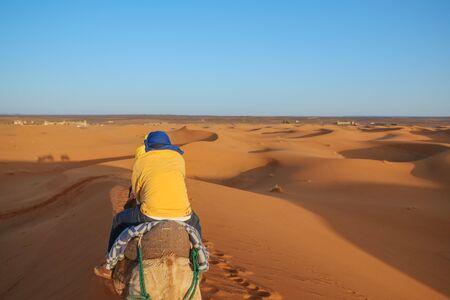 Rear view of tourists enjoy camel riding caravan activity in Sahara desert against clear blue sky. Erg Chebbi dunes, Merzouga, Morocco.