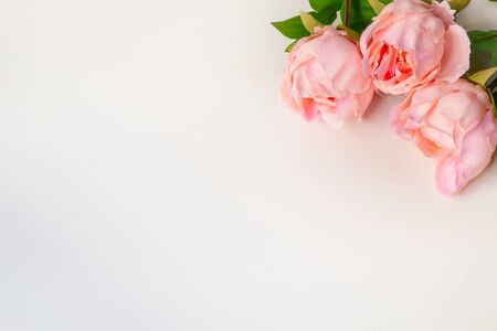 Top view of pink Peonies artificial flowers on white blank background