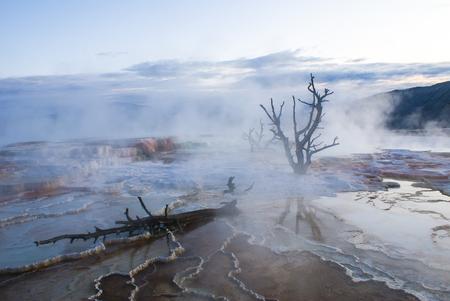 옐로 스톤 국립 공원 아침 맘모스 온천