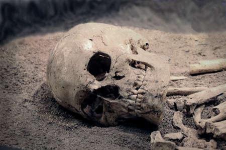 Skeleton 写真素材