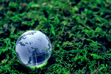 Environmental Issues and Ecology