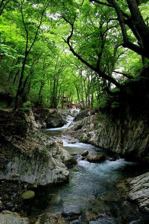 Clear stream of Iwaizumi Ryusen-dong