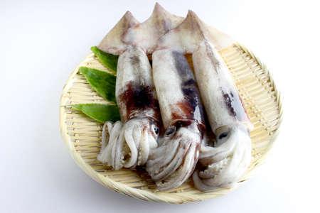 Raw squids