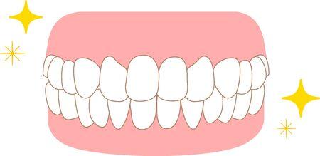 Dental care orthodontics healthy illustrations  イラスト・ベクター素材