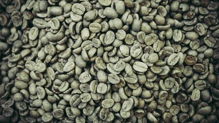 Young coffee bean background texture. Raw coffee bean. Stok Fotoğraf