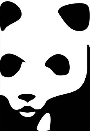 It is a picture of a face of panda or bear, in black and white