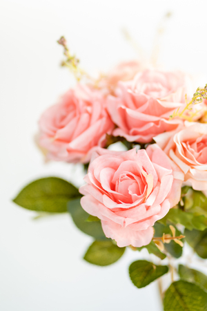 Pink roses bouquet Stockfoto - 121409583