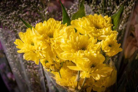 Bouquet of yellow chrysanthemum flower