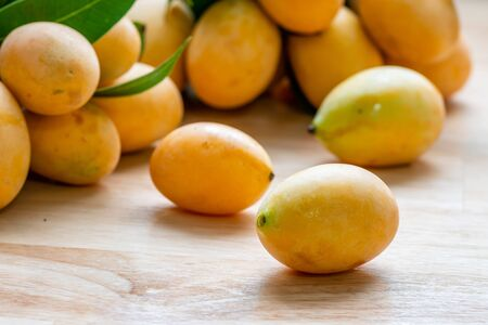 Close up of Mayongchid, Maprang Marian Plum, Plum Mango or Plango