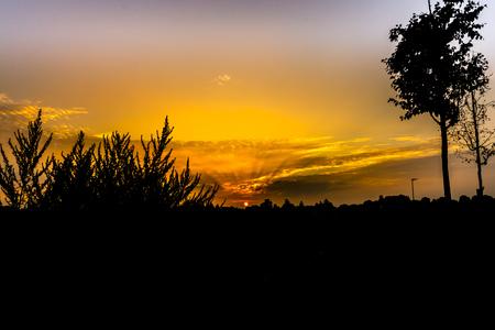 feld: Sonnenaufgang mit dramatischen Wolken und starken Kontrast