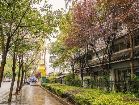 Beautiful walkway beside the road and Nature in the rainy day at Wulingyuan District Zhangjiajie City China.China travel Standard-Bild - 134130215