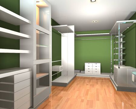 walk in closet: Empty interior  modern room for walk in closet with shelves and green wall.