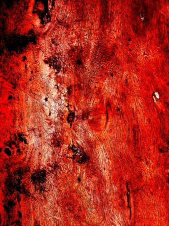 Abstract Old Wood Background Stock Photo - 14432695