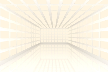 Empty room with abstract color white lighting Stock Photo - 15471917