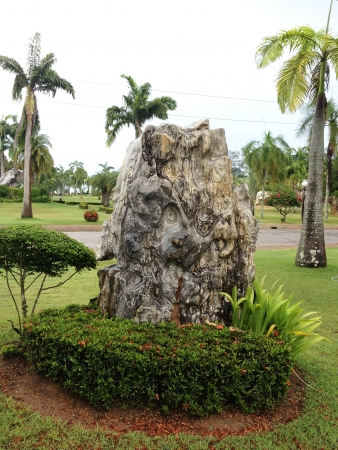 raked: Rock Garden, Shaped stones were arranged beautifully decorated garden