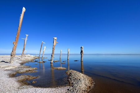 Abandoned Power Poles, Salton Sea