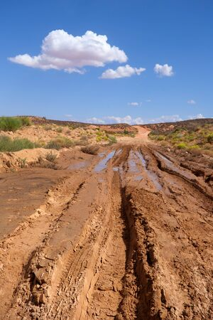 Dirt Road Stok Fotoğraf