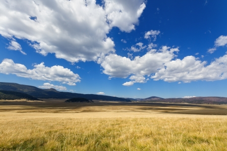 new mexico: Valles Caldera National Preserve