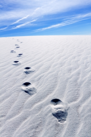 chihuahua desert: Footprints on White Sands
