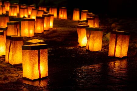 Christmas Luminarias photo