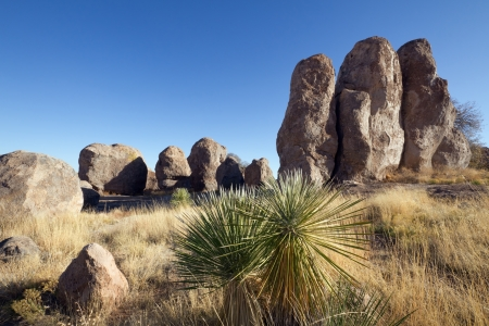 Yucca and large sculptured rock formation, City of Rocks State Park, NM  Stock Photo