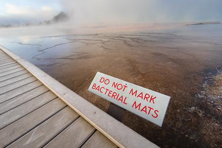 Bacteriële matten bij de Grand Prismatic Spring, het Nationaal Park Yellowstone