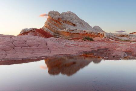 White Pocket Reflection bei Sonnenuntergang, Vermilion Cliffs National Monument, Arizona Standard-Bild