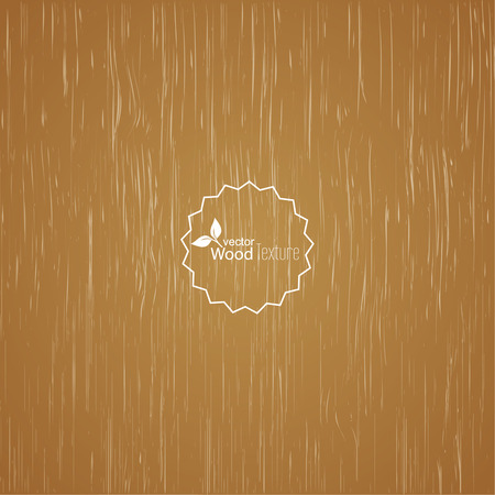 fibrous: Light wood background. Panel with a fibrous structure of the tree. Wooden texture. Vector