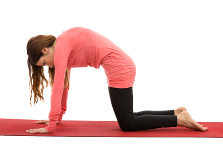 Woman doing yoga Cat pose Stock Photo