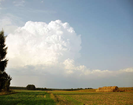 thundercloud over a field Stock Photo - 11816032