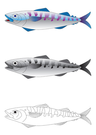 Deep sea fish in colour, greyscale and outline vector illustration