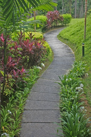 Curved path in a tropical garden Stock Photo