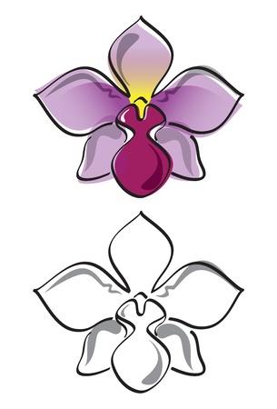 een paarse orchidee in kleur en in grijstinten Stock Illustratie