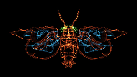 Illustration of a winged insect using light illustration technique Stock Photo