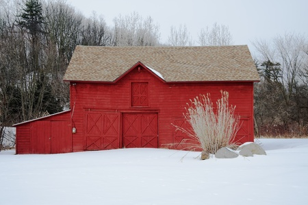 Pampas grass accents a beautiful red barn