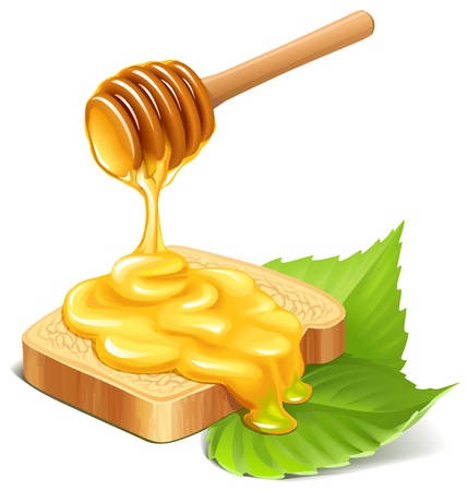 Honey dripping on a bread slice and green leaves