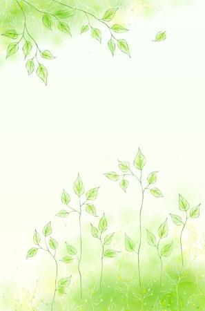 Carte de printemps Vector avec un feuillage vert Banque d'images - 12497674
