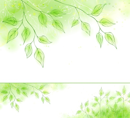 Bannière de printemps Vector avec un feuillage vert Banque d'images - 12497680