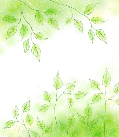 Vector spring card with green foliage Stock Vector - 12497676