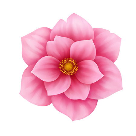 Vector anemone pink flower decorative illustration isolated on white background Ilustração