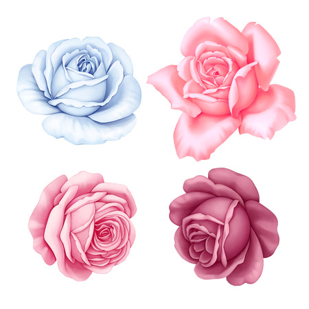 rose petals: Floral set of pink, red, blue white vintage rose flowers  isolated on white background. Digital watercolor illustration. Stock Photo